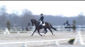 Whisper : Pro 2 GP le 6/4/2013 Grand National de Jardy